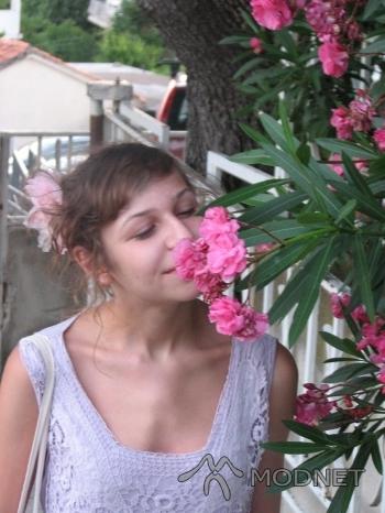 Sukienka KappAhl, http://www.allegro.pl