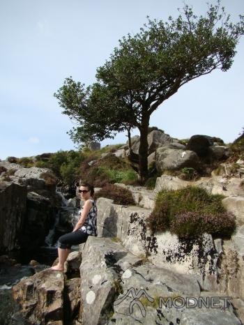 Jeansy Sunbird, http://www.allegro.pl